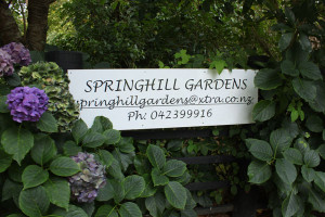 Springhill-gardens-sign